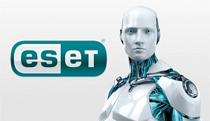 Купить ESET Dynamic Endpoint Protection в ИБР